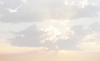 Carte simple mouette dans les nuages