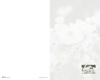 Rouwkaart dubbel bloemen