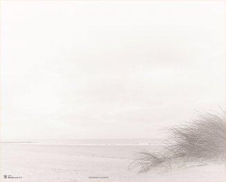 Rouwkaart dubbel duinengras