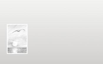 Carte de remerciementsoiseau et mer sur fond gris