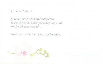 Blister orchidée + texte
